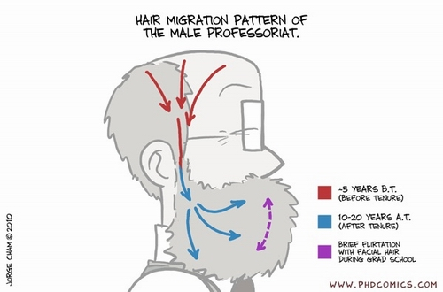 phd-comics-professoriat-hair-growth